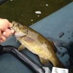 James River Smallmouth